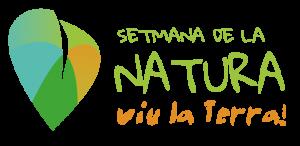 Logo_DEF2_transparent