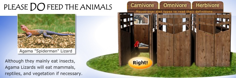 feed_animals