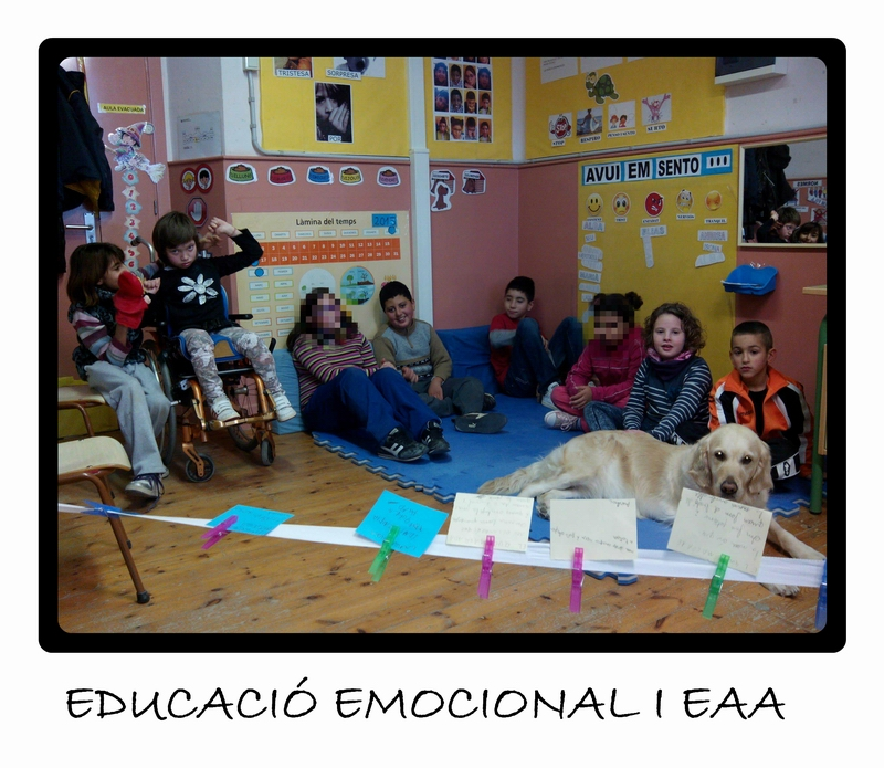 EAA educ.emocional