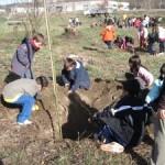 2010-3-2_plantada-darbres-ci