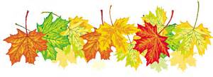 Els colors de les fulles