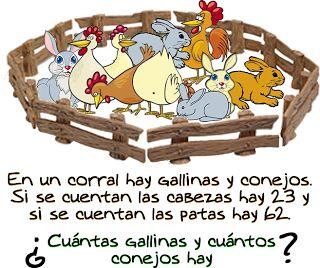 enigma conills