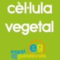 Cèl·lula vegetal