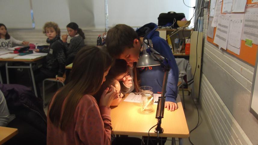 treballant experiment