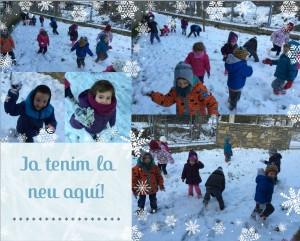 collage nevada des